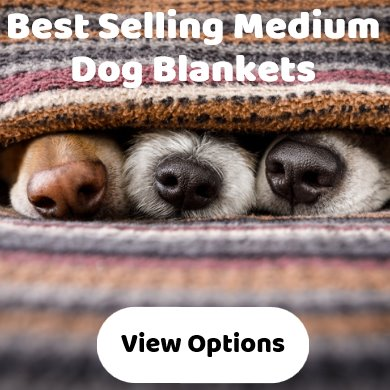 Medium dog blankets - best selling - wide range