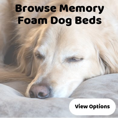 Memory foam dog beds - best selling - wide range