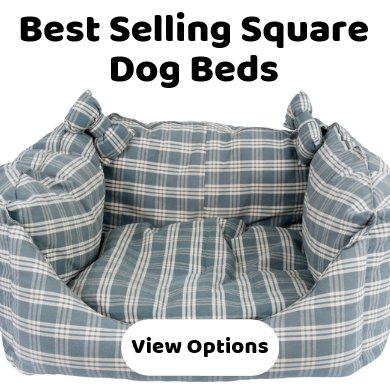 Square dog beds - best selling - wide range